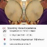 Sounding Voice Experience door Richard Hereijgers
